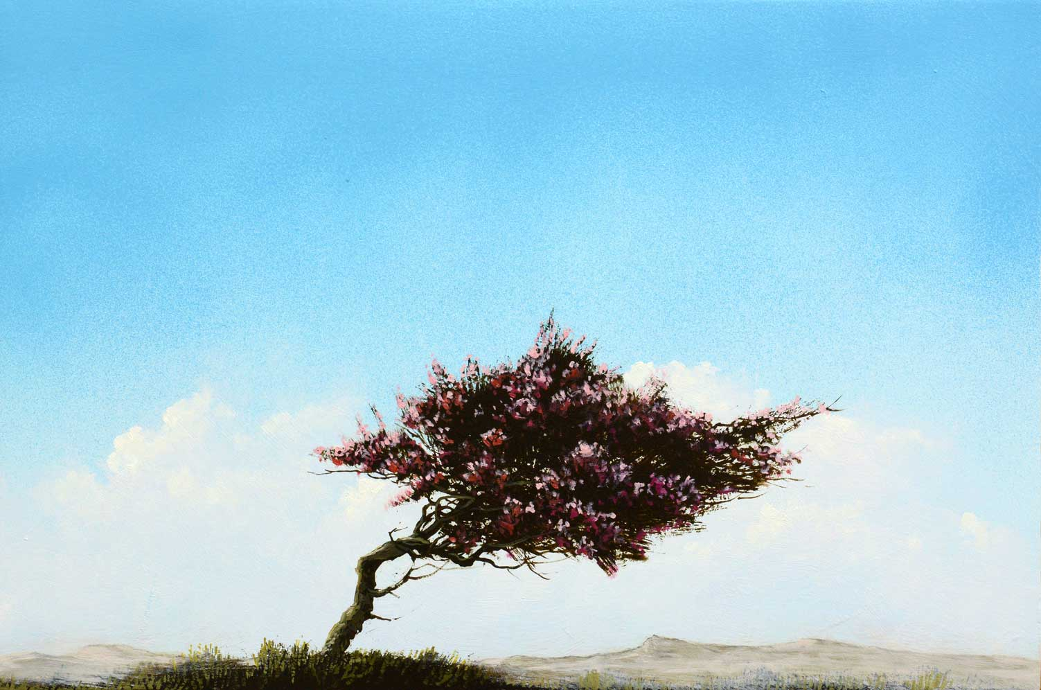 Desert Bloom painting by Robert Marchessault