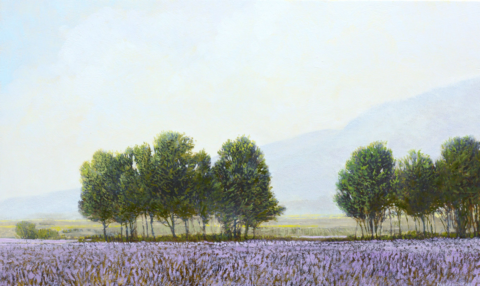 Lavender Farm by Robert Marchessault