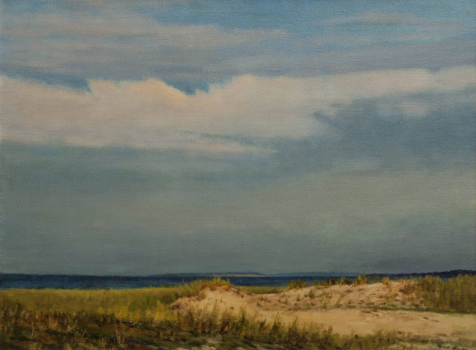 Dunes along the Coast painting by Peter Hagen