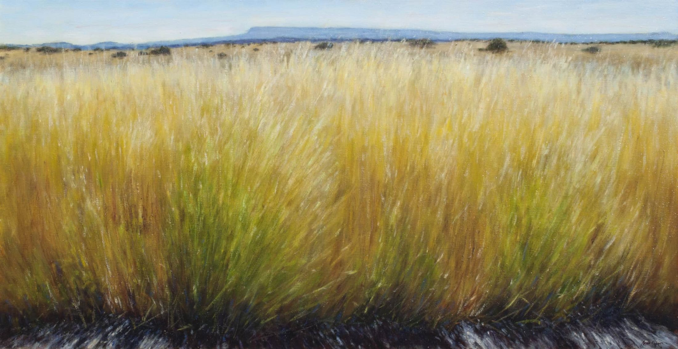 Grasses by Peter Hagen