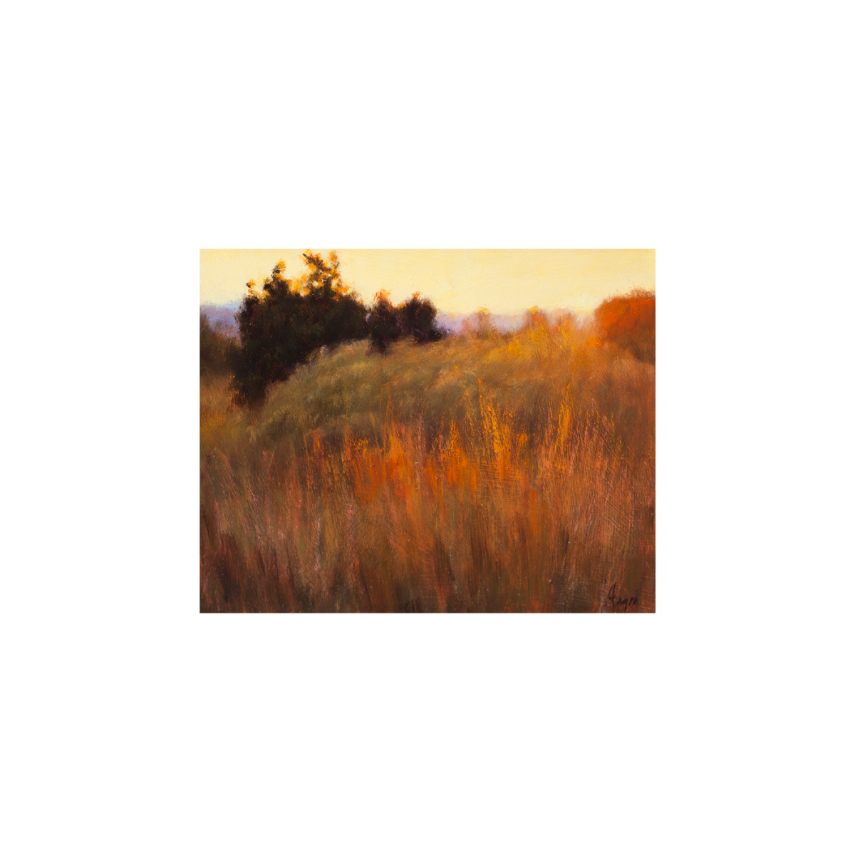 Grasses at Sunset painting by Peter Hagen