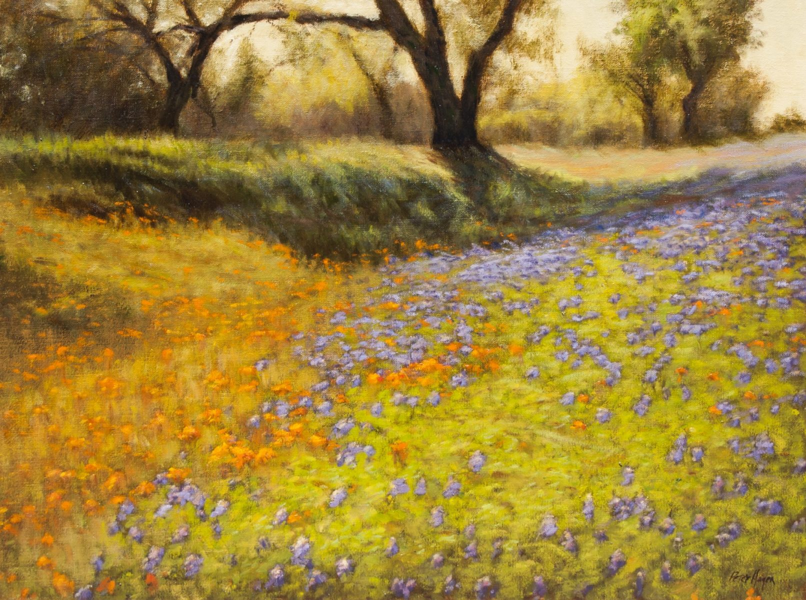 Painting of the Texas Hill Country by Peter Hagen
