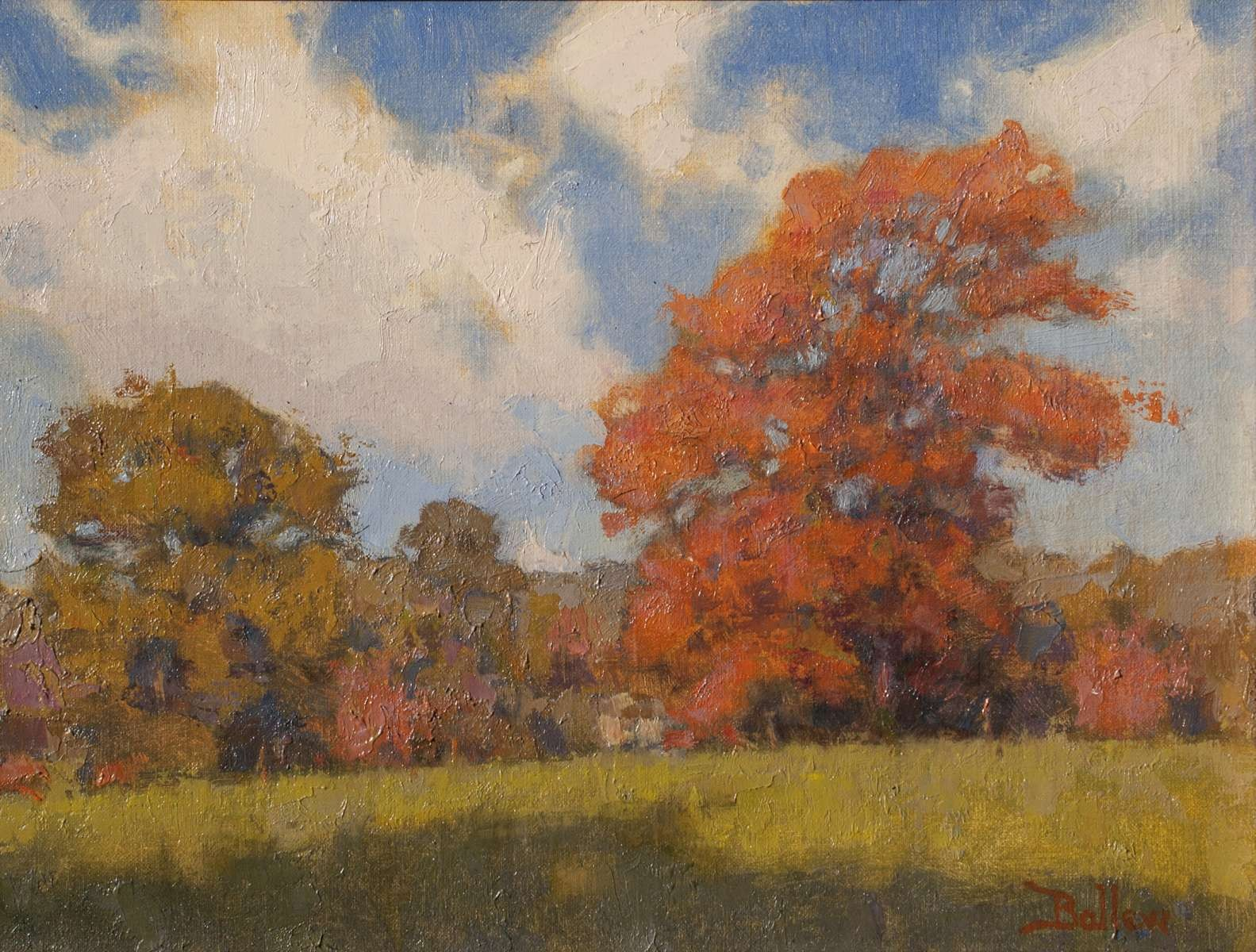 October Maple by David Ballew