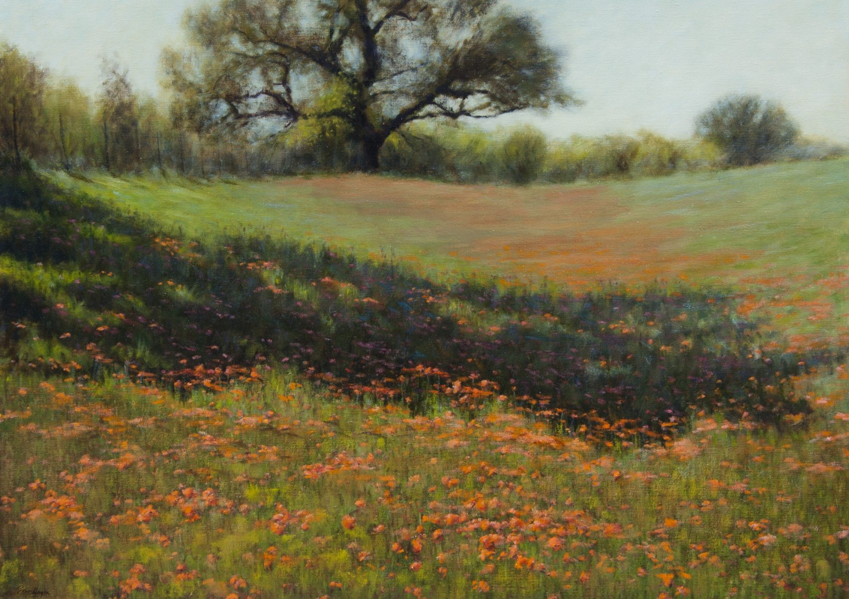 Spring in the Hill Country painting by Peter Hagen