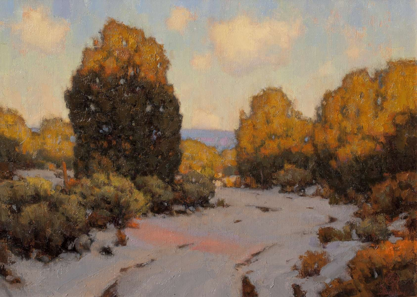 Winter Evening Shadows by David Ballew