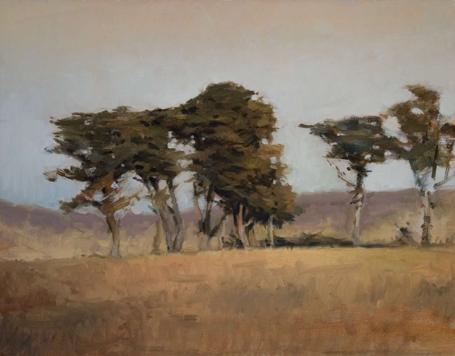 landscape painting by artist Peter Campbel