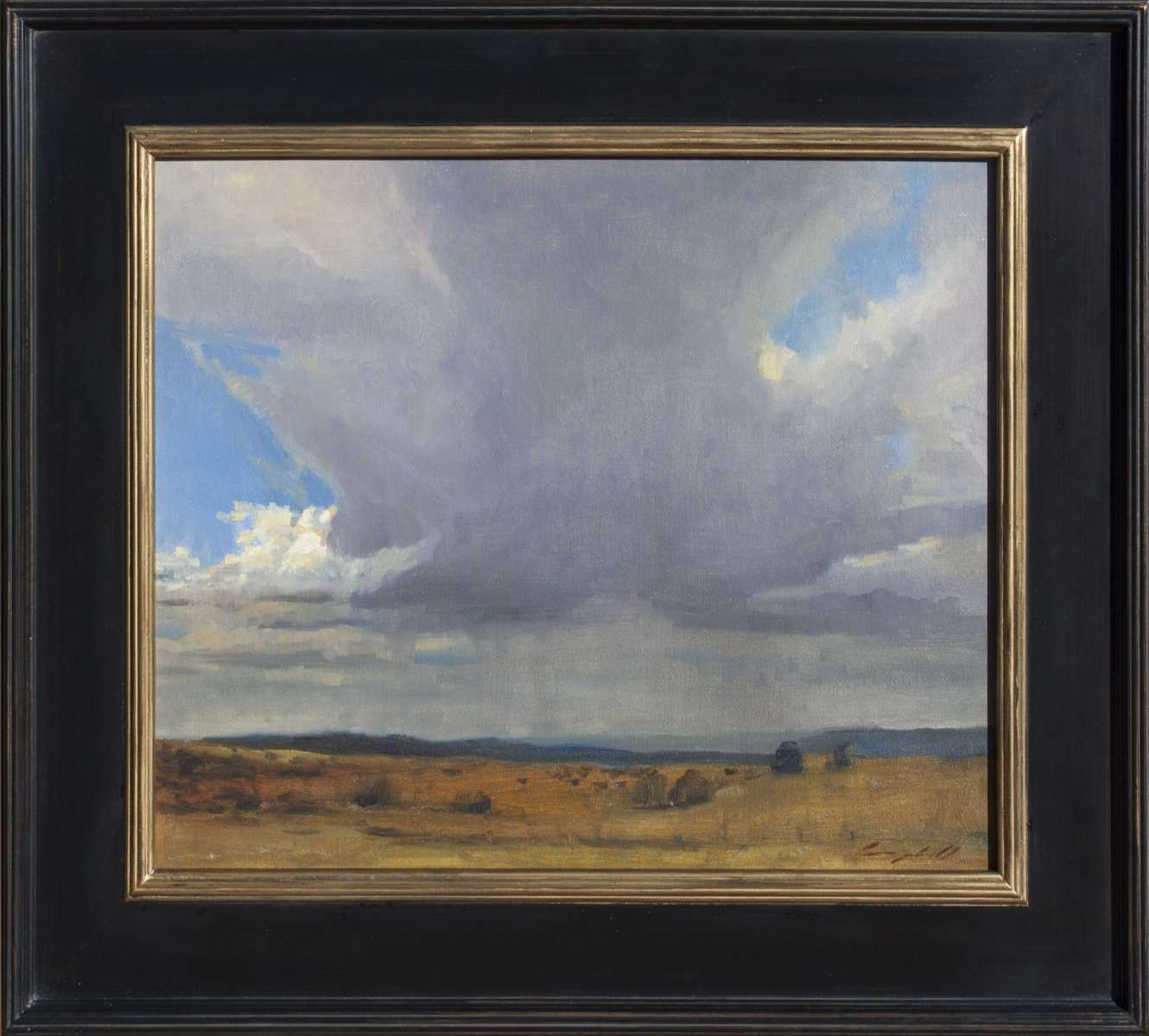 New Mexico Rain by Peter Campbell